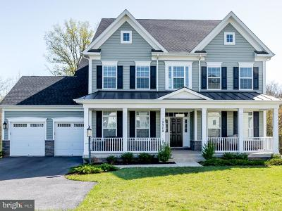 Poolesville Single Family Home For Sale: 19904 Brightwell Crossing Lane