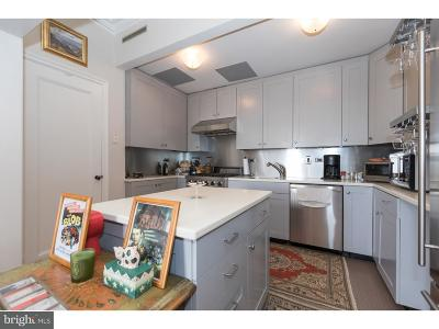 Rittenhouse Square Single Family Home For Sale: 237 S 18th Street #17C