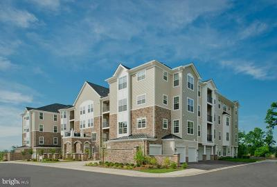 Reisterstown Condo Under Contract: 605 Quarry View Court #308