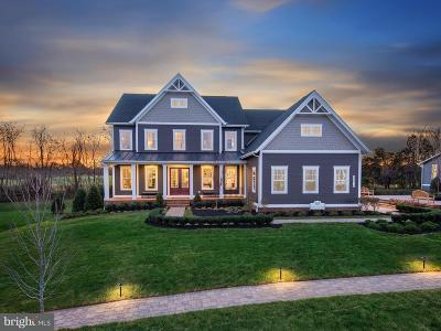 Ashburn Single Family Home For Sale: Linwood Manor Place