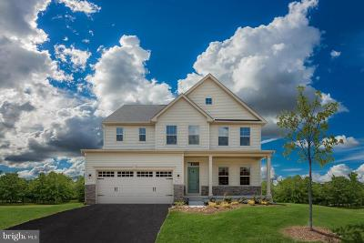 Clarksville, Columbia, Ellicott City, Laurel Single Family Home For Sale: 9809 Sawmill Branch Trail