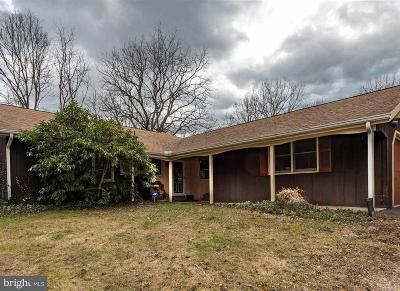 Hershey Single Family Home For Sale: 653 Sand Hill Road