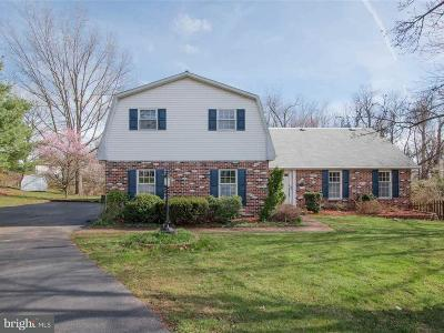 Hummelstown Single Family Home For Sale: 357 Laurie Avenue