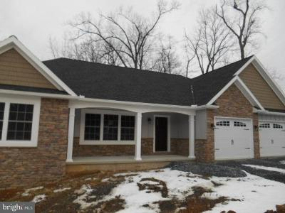 Elizabethtown Single Family Home For Sale: 4 Evelyn Drive