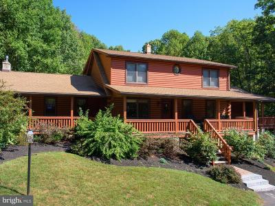 Mohnton Single Family Home For Sale: 1199 Buck Hollow Road