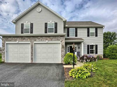 Single Family Home For Sale: 43 Chestnut Hollow Drive