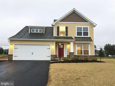 Carlisle Single Family Home For Sale: 147 Bellows Drive