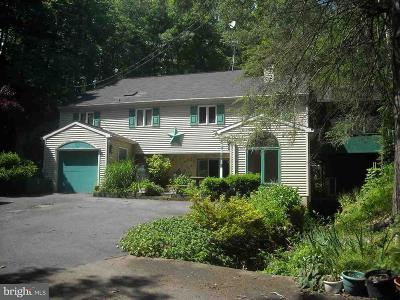 Duncannon Single Family Home For Sale: 60 Hoffman Road