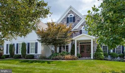 Hummelstown Single Family Home For Sale: 1167 Duryea Drive