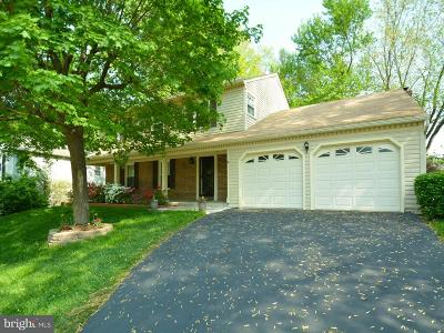Springfield Single Family Home For Sale: 7601 Woodstown Drive