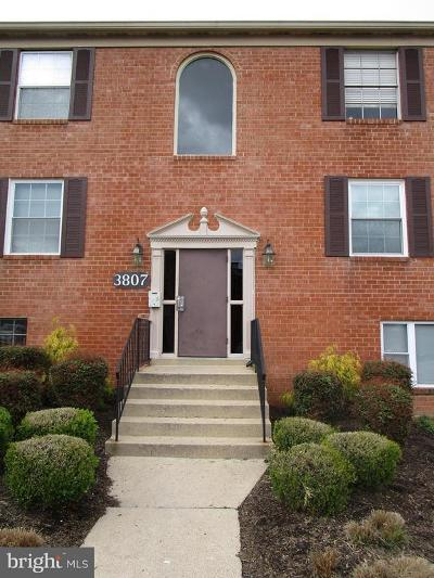Suitland Rental For Rent: 3807 Swann Road #3