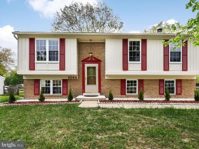 Waldorf Single Family Home For Sale: 1044 Bannister Circle