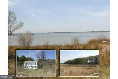 Calvert County, Charles County, Saint Marys County Single Family Home For Sale: 16374 Piney Point Road