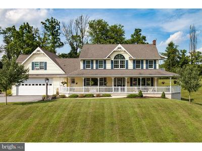 Single Family Home For Sale: 211 Farview Road