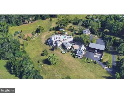 Collegeville Single Family Home For Sale: 1121 Hollow Road