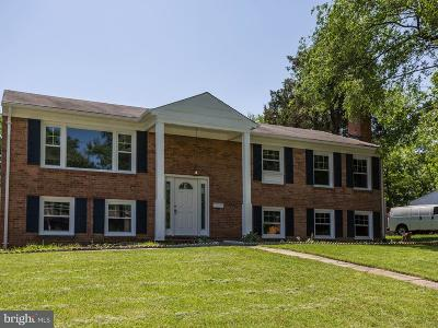 Annandale Single Family Home For Sale: 4928 Americana Drive