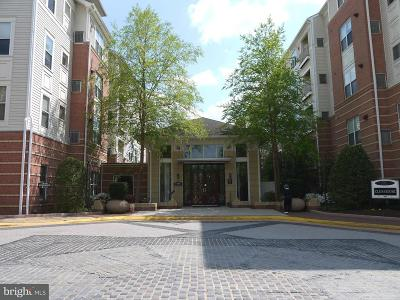 Vienna Single Family Home For Sale: 9490 Virginia Center Boulevard #128