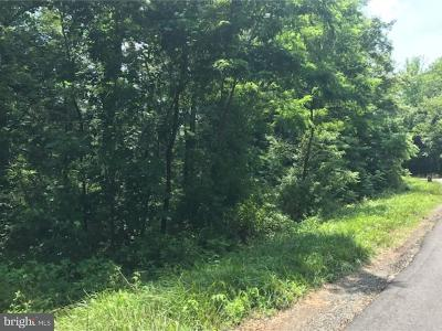 Residential Lots & Land For Sale: 333 Rocktown Lambertville Road
