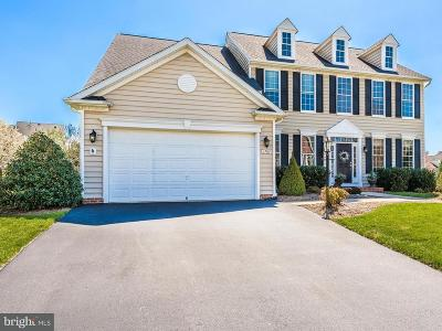 Carroll County Single Family Home For Sale: 1709 Kings Forest Trail