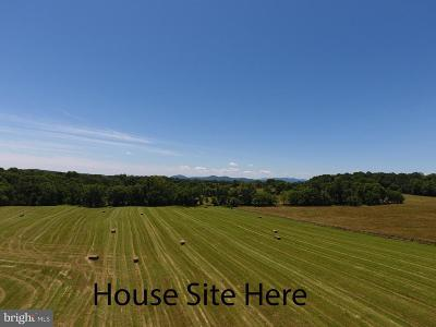 Fauquier County Single Family Home For Sale: 8101 Old Carters Mill Road