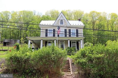 Boonsboro Single Family Home For Sale: 6234 Old National Pike