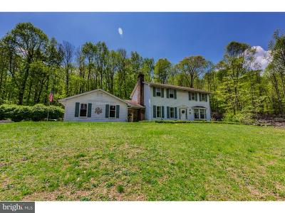 Coatesville Single Family Home For Sale: 110 Old Orchard Lane