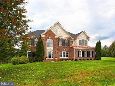 Leesburg Single Family Home For Sale: 40616 Opal Court