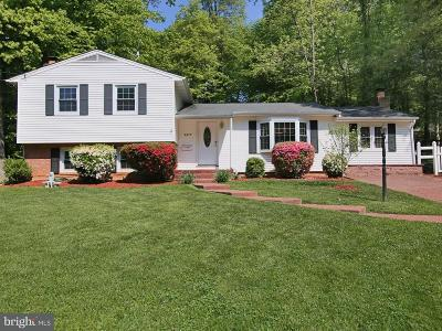 Annandale Single Family Home For Sale: 4917 Springbrook Drive