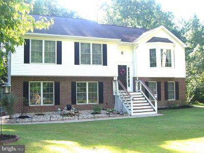 Culpeper County Single Family Home For Sale: 3309 Hunters Trail Drive