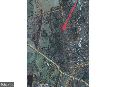 Bucks County Residential Lots & Land For Sale: 949 Richlandtown Road