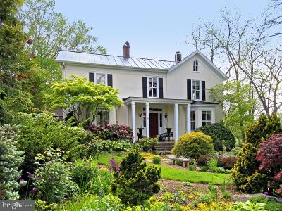 Fauquier County Single Family Home For Sale: 6463 Main Street