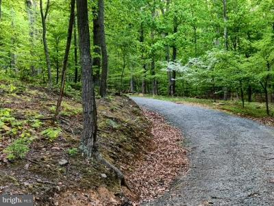Leesburg Residential Lots & Land For Sale: 14029 Steed Hill Lane