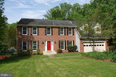 Fairfax County Single Family Home For Sale: 10295 Dunn Meadow Road