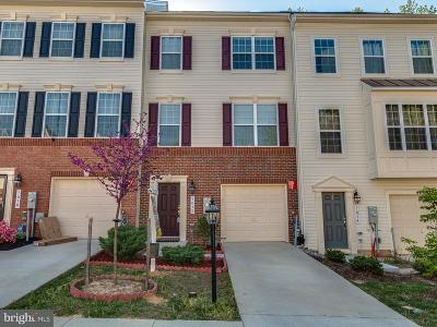 Anne Arundel County Townhouse For Sale: 7012 Dannfield Court