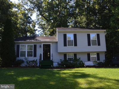 Lincoln, Lincoln- Single Family Home For Sale: 9811 Ridge Street