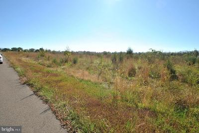 Nokesville Residential Lots & Land For Sale: 11241 Slate View Court