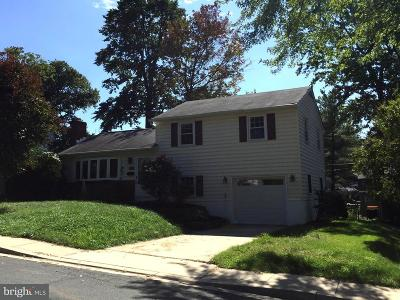 Linthicum Single Family Home For Sale: 105 Mountain Road
