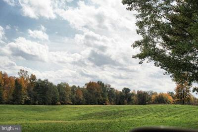 Spotsylvania County Residential Lots & Land For Sale: 10201 Robert E Lee Drive