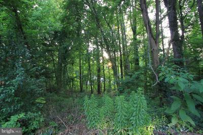 Chesapeake Beach Residential Lots & Land For Sale: 4020 Calvert Street