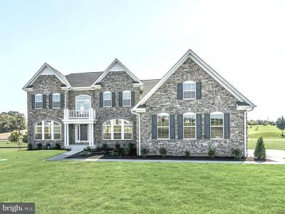 Carroll County Single Family Home For Sale: 703 Chimney Rock Court