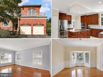 Rockville Single Family Home For Sale: 3029 Windy Knoll Court