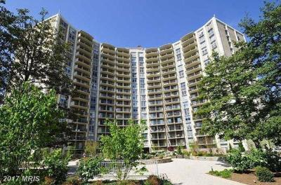 Silver Spring Condo For Sale: 9039 Sligo Creek Parkway #910