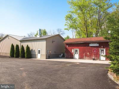 Adams County Commercial For Sale: 381 Kohler Mill Road