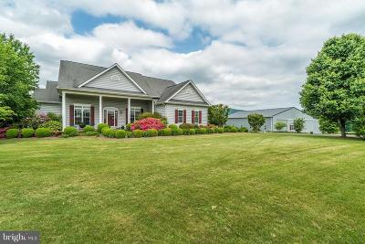 Fauquier County Single Family Home For Sale: 11546 Hereford Road