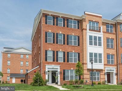 Ashburn Condo For Sale: 23646 Hopewell Manor Terrace