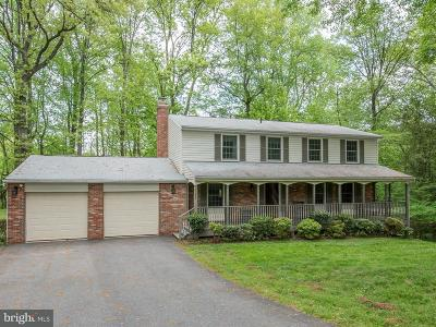 Great Falls Single Family Home For Sale: 1125 Riva Ridge Drive