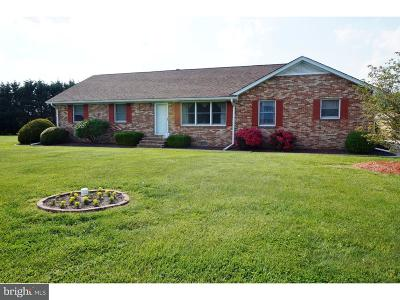 Seaford Single Family Home For Sale: 21704 Maple Drive