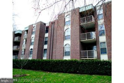 Annandale, Falls Church Condo For Sale: 8310 Tobin Road #22