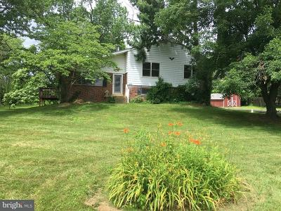 Chalfont Single Family Home For Sale: 3680 Limekiln Pike