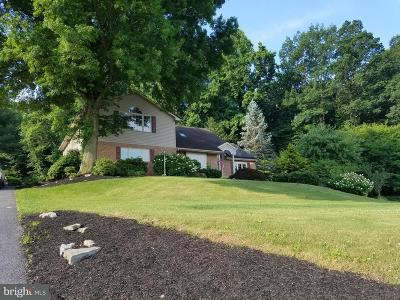 Ephrata Single Family Home For Sale: 149 Valley View Drive